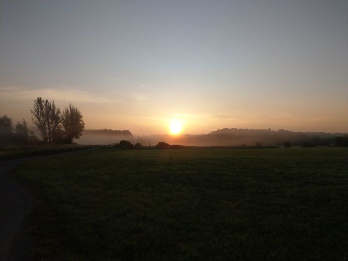 Sonnenaufgang Onolsheim Morgen Morgenstimmung Morning Ligjt And Shadow Light Fog Morninglight Tree Rural Scene Astronomy Tree Area Forest Agriculture Foggy