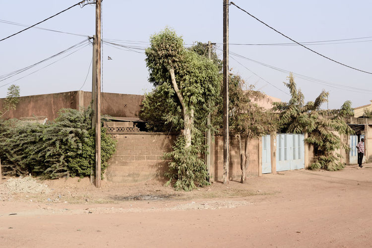 A road in Ouagadougou (Burkina Faso) Ouagadougou Burkina Faso Plant Tree Cable Nature Sky Power Line  Built Structure Electricity  Architecture Power Supply Telephone Line Road Building Exterior Clear Sky Land Green Color Electricity Pylon Day Outdoors Building Africa EyeEm Best Shots EyeEm Gallery
