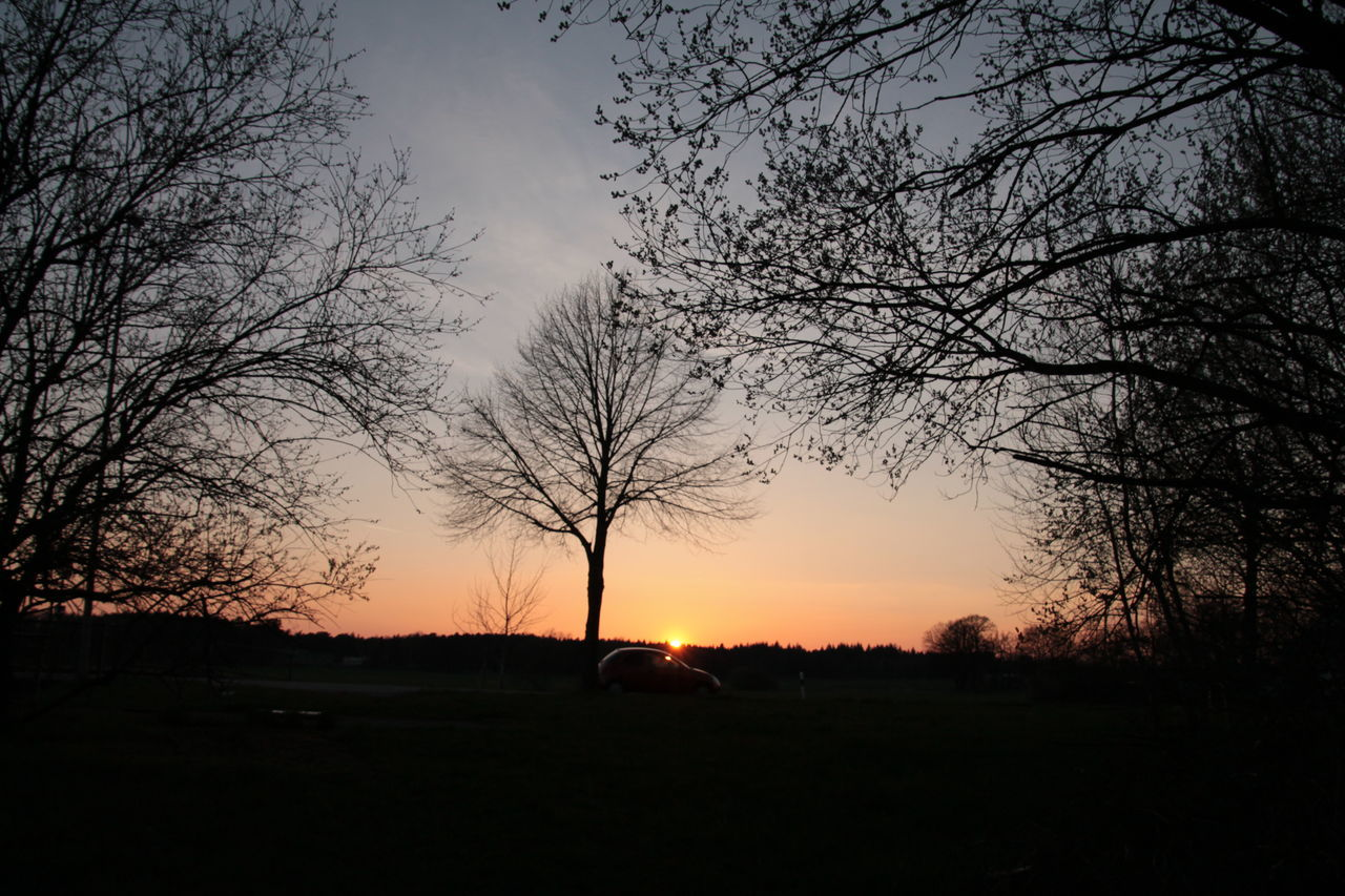 sunset, silhouette, orange color, tree, sky, field, beauty in nature, tranquil scene, nature, landscape, tranquility, bare tree, no people, scenics, sun, outdoors, day