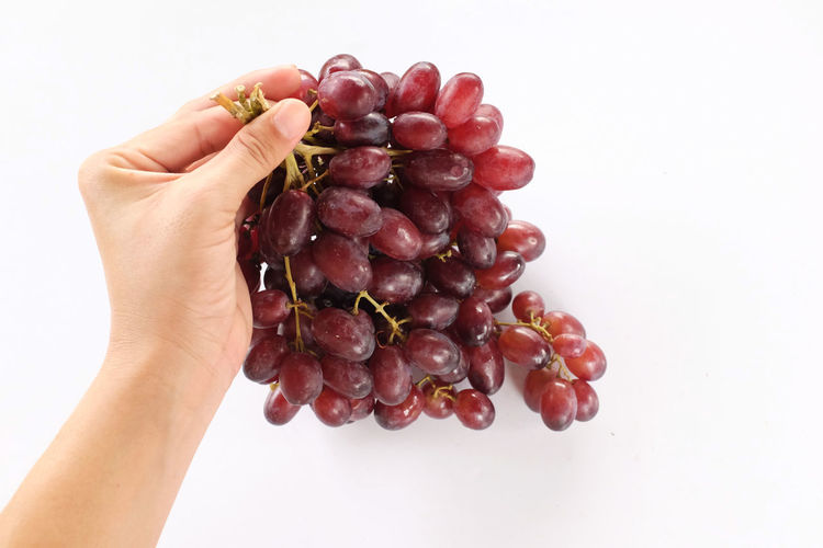 Close-up of hand holding berries over white background