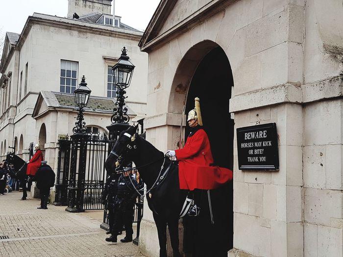 London Guards Hourse