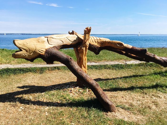 Driftwood on wood by sea against sky