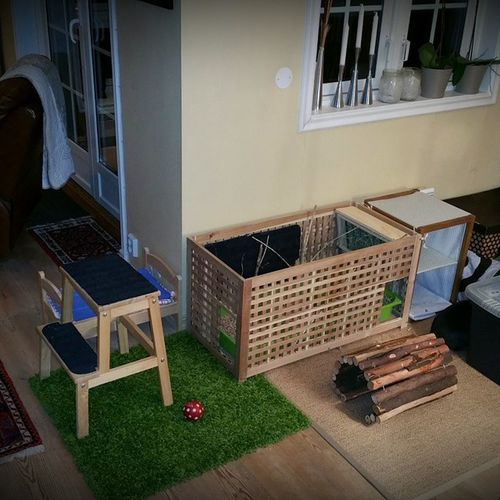 My Bunnies live here CageFree with Litterbox in an IKEA Hol table
