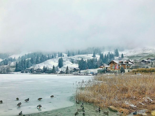 Winter Cold Temperature Snow Mountain Weather Nature Outdoors No People Frozen Lake Landscape