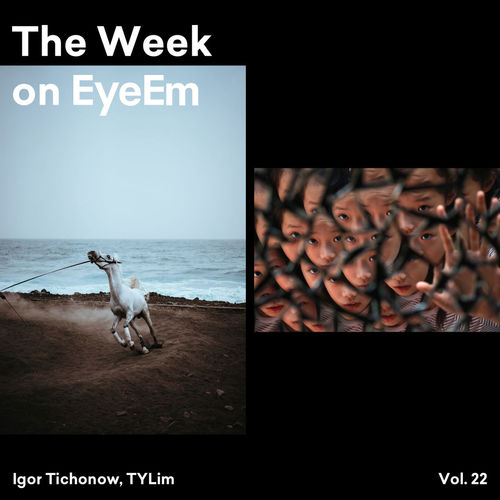 The Week on EyeEm is here ✨ https://www.eyeem.com/blog/the-week-on-eyeem-22-2018