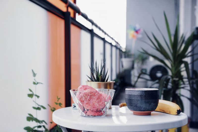 My Balcony Hello Summer Balcony Balcony Plants Balcony Table Food Food And Drink Table No People Plants Growth Plate Flower Home Interior Drink Vase Window Sweet Food Japanese Tea Cup Afternoon Tea Growing Visual Creativity Summer Exploratorium Modern Hospitality