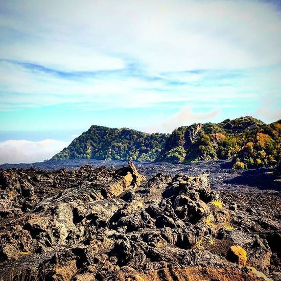 Etna...excursion..panoramic! Italy Sicily Catania Etna Mountain Volcano Excursion Great day Panoramic Relax Stopnoises Wild Greatday Nature Nature lovers Downhill Trekking Awesomeplaces Green Trees