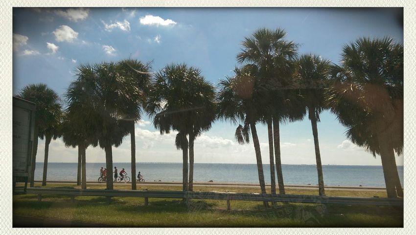 October in Florida First Eyeem Photo