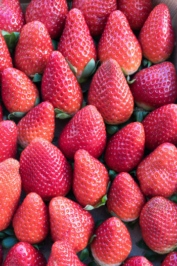 Strawberries Colorful Food Fruits Healthy Healthy Food Macro Organic Food Strawberries