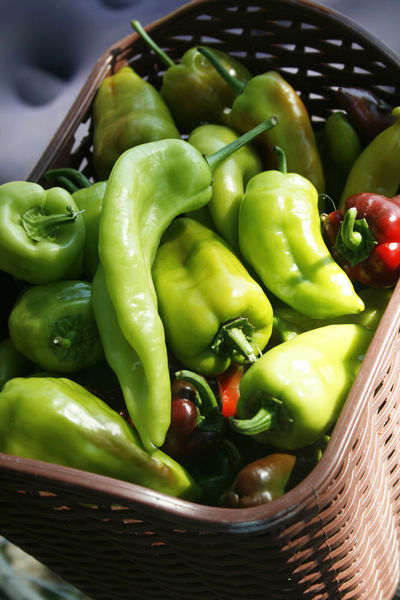 Domestic Life Green Green Color Basket Contryside Green Peppers Paprika Pepper Peppers Red Peppers Vegetable Village