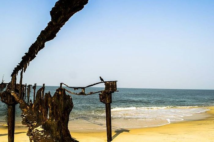 The crow and the sea ! . . . India Alleppey Kerela Beach Sea Water Broken Bridge Scenery Landscape Instapic Picoftheday Pictureoftheday Storiesofindia _iso Photogrid Photooftoday Photography Summer Travel Travelingram