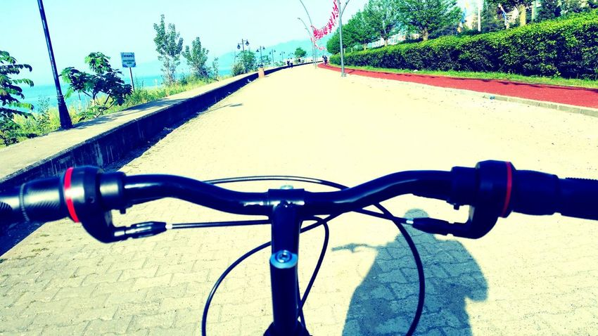 Bicycle Music Peace Relaxing Be Happy Rize/Turkey That's Me Green Leaves Enjoying Life Summer ☀