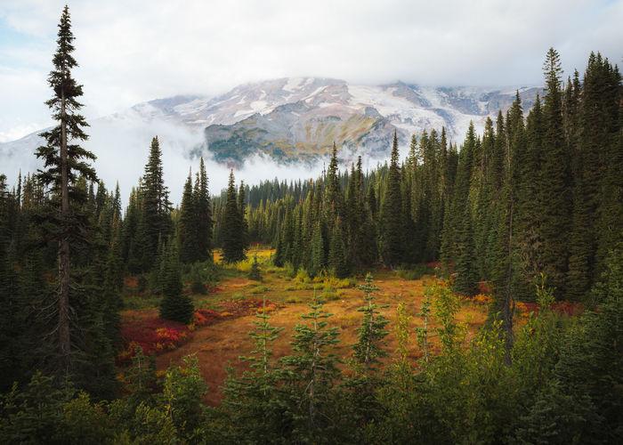 Fall Views at