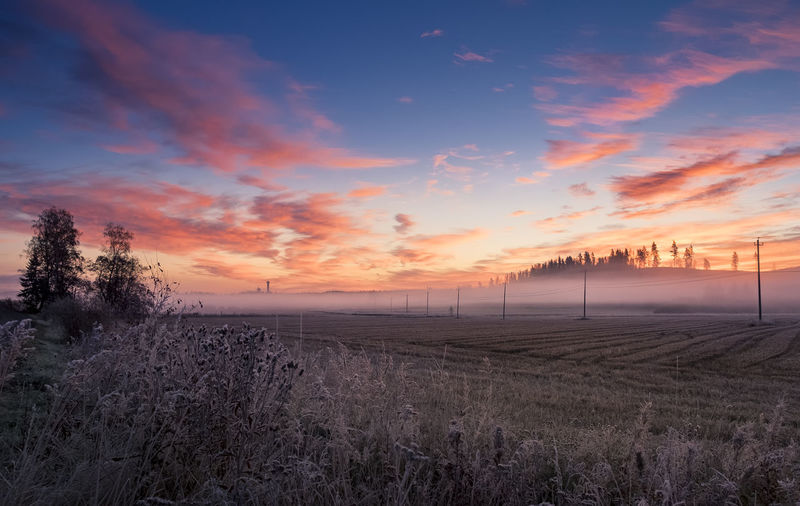 Beautiful sunrise landscape at field in Hyvinkää, Finland Autumn Beauty Cloud - Sky Colorful Sky Colors Country Countryside Dramatic Sky Electric Pole Fall Field Foggy Frosty Landscape Misty Morning Nature No People Outdoors Scenics Sky Sunrise Sunset Tree Trees