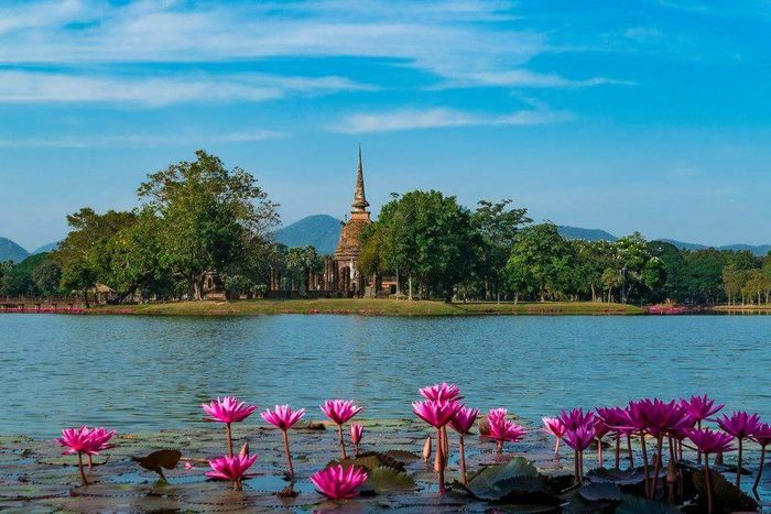 Sukhothai Thaïland Travel Destinations Flower Nature Blue Water No People Sky Lake Plant Beauty In Nature Architecture Outdoors Day Place Of Worship Tranquility Thailand Sukhothai Buddhist Temple HuaweiP9Photography Sukhothaihistoricalpark Travel Nature Travelphotograpy