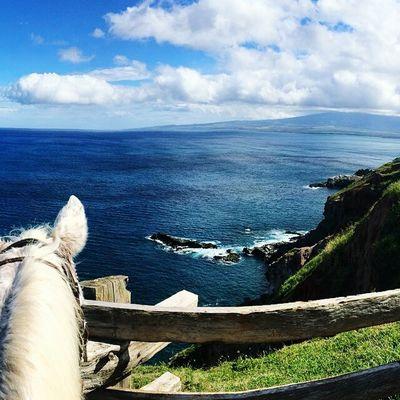 Horse Riding Horseback Beautifulview Maui Mindblowing
