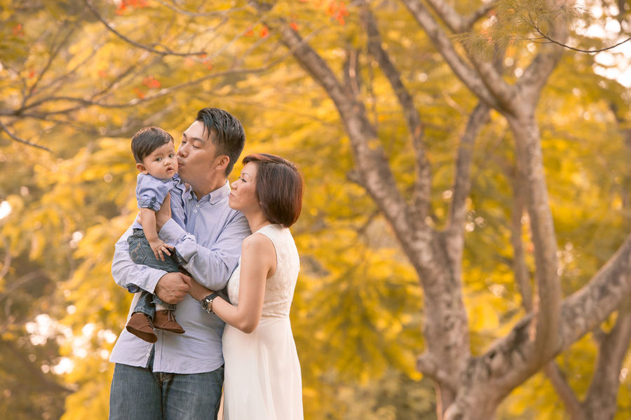 Chinese Family ASIA Asian  Asian Family Autumn Bonding Boys Childhood Chinese Daughter Family Family With One Child Father Focus On Foreground Happiness Leisure Activity Lifestyles Love Mid Adult Mid Adult Men Mother Outdoors Real People Son Togetherness Tree