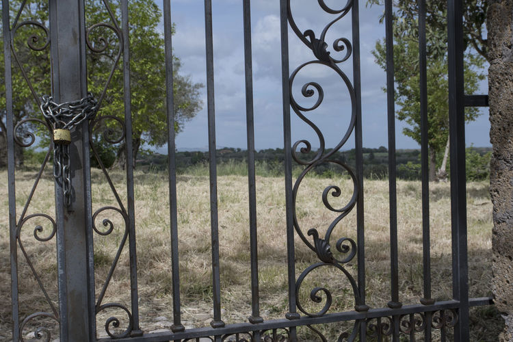 Closed gate of metal fence