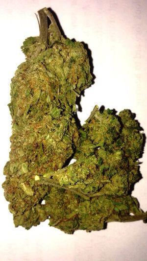 Weed Iloveweed Green Ganja Ganjagirl Marijuana Yessss