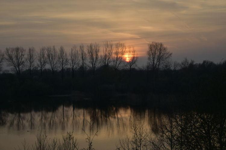 Face Sunset