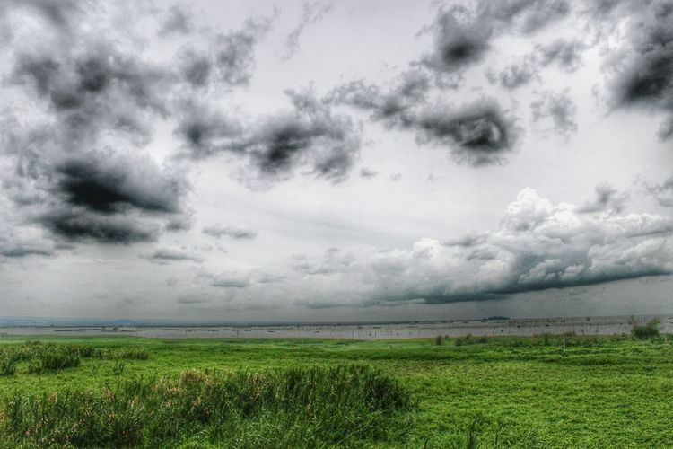 Grass Tranquil Scene Tranquility Sky Scenics Landscape Beauty In Nature Field Cloud - Sky Nature Growth Water Non-urban Scene Day Grassy Green Color Sea Cloudy Cloudscape Solitude Eyeem Philippines Hdr_Collection HDRInfection Philippines