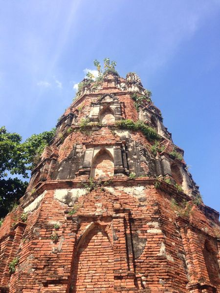 Old pagoda วัดมหาธาตุ ThaiTemple Ayutaya Thailand Noeffect History Religion Spirituality Ancient Nature Outdoors Travel Travel Destinations Belief Tree Place Of Worship Day