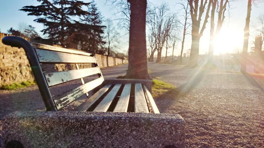 Empty bench in park against bright sun
