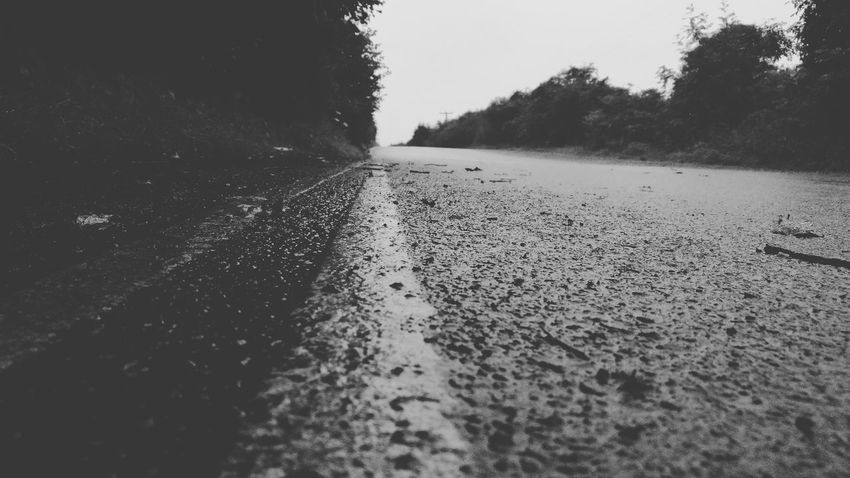 monochrome road Water Road Wet Tree Drop Sky Tire Track Rainy Season Rain Rainfall Weather