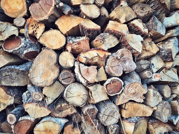 Cesarò-nebrodi Beauty In Nature Close-up Outdoors Nature Firewood Log Timber Woodpile Stack Forestry Industry Wood Full Frame Heap Backgrounds Shape Lumber Industry Repetition Wood - Material Abundance Deforestation Textured  Large Group Of Objects Fuel And Power Generation Agriculture