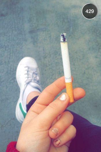Smoke Camel