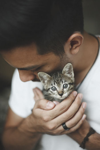 handsome man holds an adorable kiten Adorable Cat Domestic Animals Domestic Cat Focus On Foreground Holding Kitten Kittens Kitty Looking At Camera Mammal One Animal Pampered Pets Part Of Person Pet Owner Pets Selective Focus Whisker Young Animal