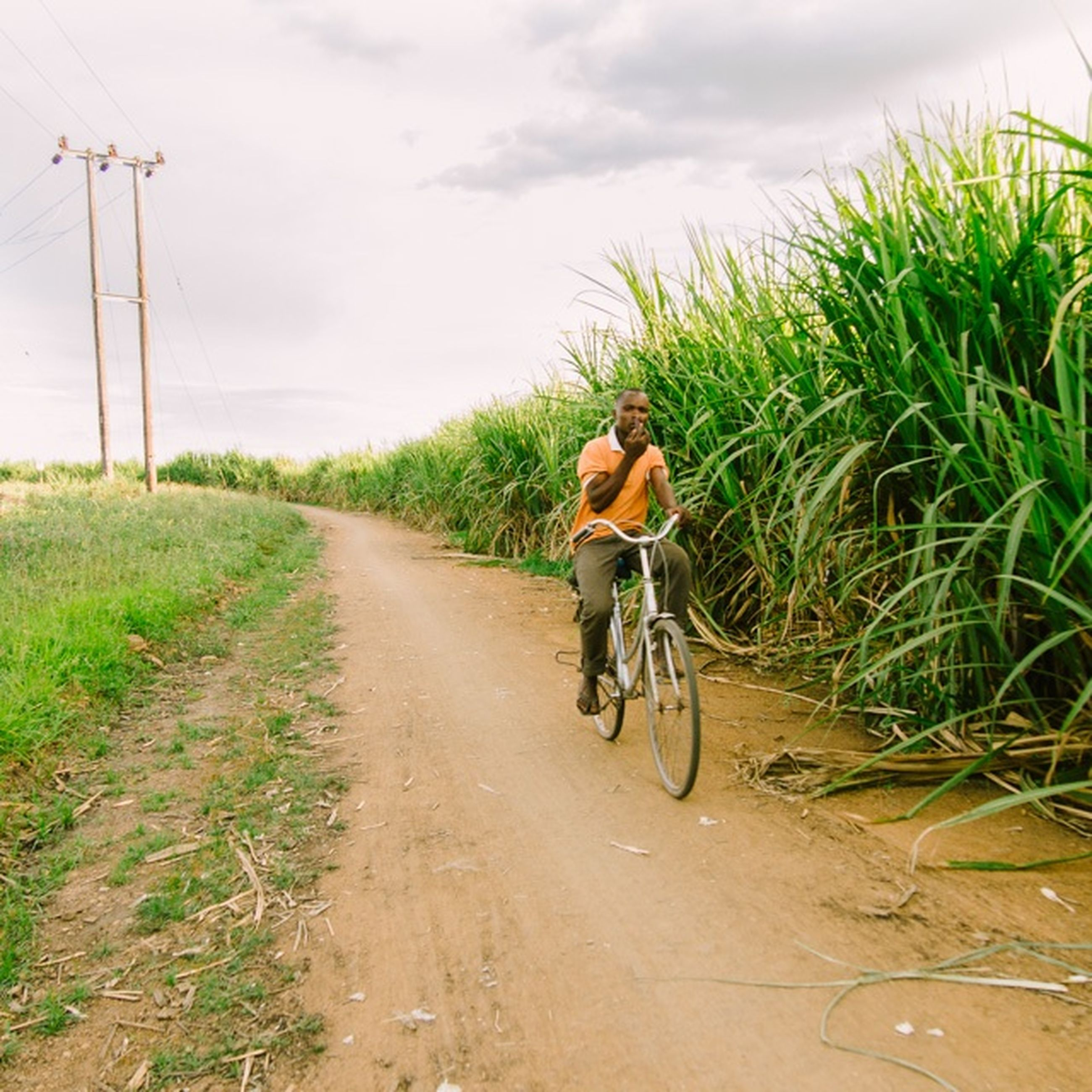 transportation, full length, riding, bicycle, the way forward, lifestyles, mode of transport, rear view, land vehicle, dirt road, leisure activity, men, road, cycling, sky, on the move, casual clothing, diminishing perspective