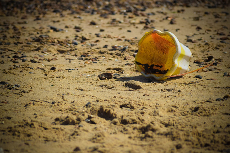 At The Beach At The Seaside Beach Bucket Bucket In The Sand Day Outdoors Sand Yellow