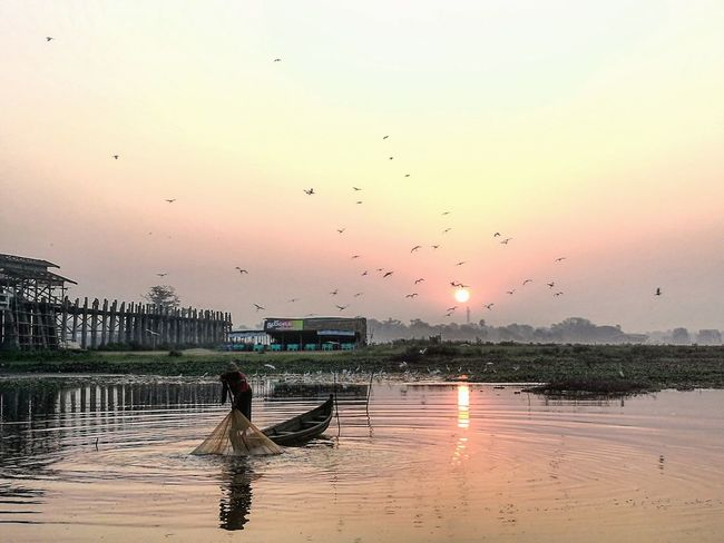 A moment of life - Ubein bridge, Mandalay, Myanmar 2018 HuaweiP9 Huaweiphotography Huawei P9 Leica Sunrise Mandalay Myanmar Travel Destinations Tranquility Travel Ubeinbridge EyeEm Selects Bird Reflection Flock Of Birds Water Beauty In Nature Silhouette EyeEmNewHere
