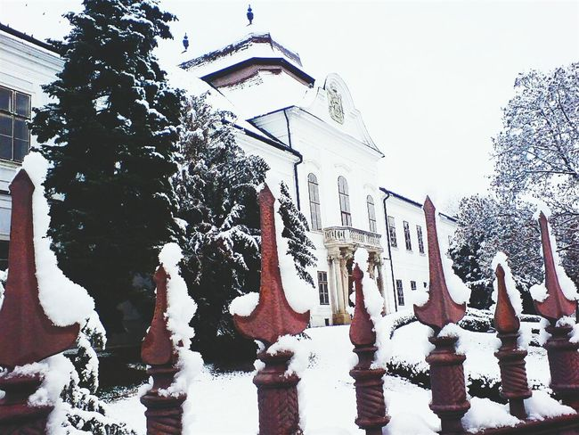 A Snowy Memory ... Winter Snow Advent Palace Hatvan Hungary Balcony White Cold Pinetree My Winter Favorites It's Cold Outside