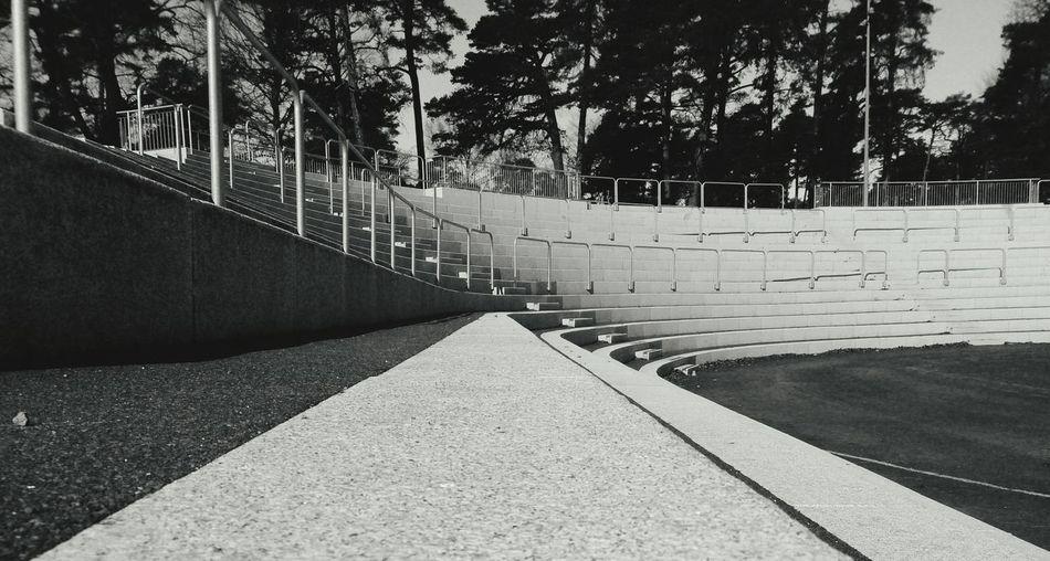 Tribune Stairs Granite Blackandwhite Photography Park Trees
