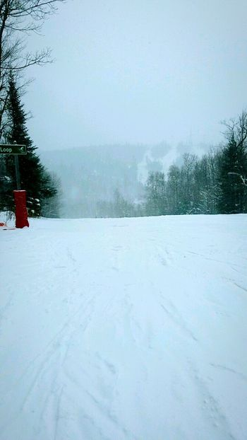 Cold Temperature Snow Winter Weather No People Outdoors Landscape Mountains Skiing Minnesota Nature Minnesotaphotographer Nature Pine Tree Beauty In Nature