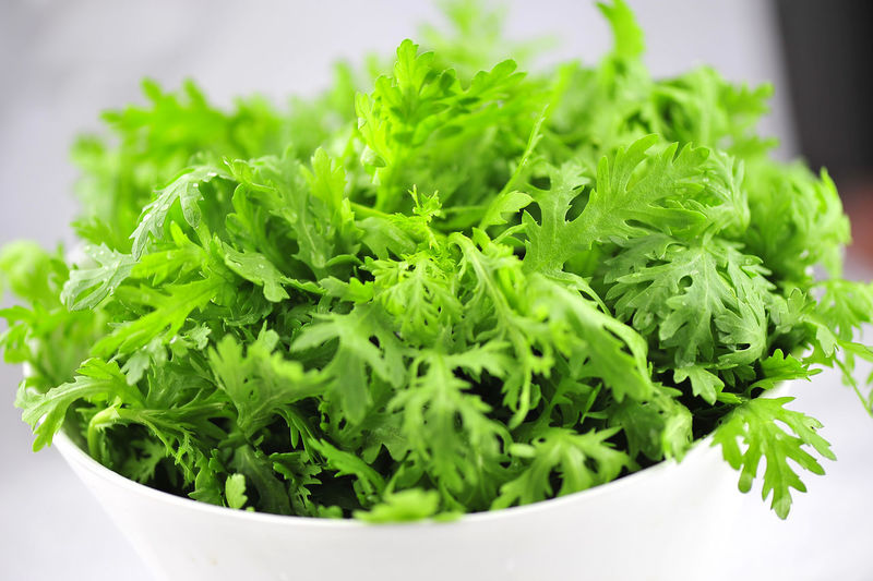 Close-up of cilantro in bowl