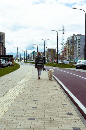Rear view of dog walking on footpath