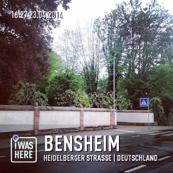 Rain means blessling of god ♥ Rain Germany Bensheim Blessing god happines beautiful