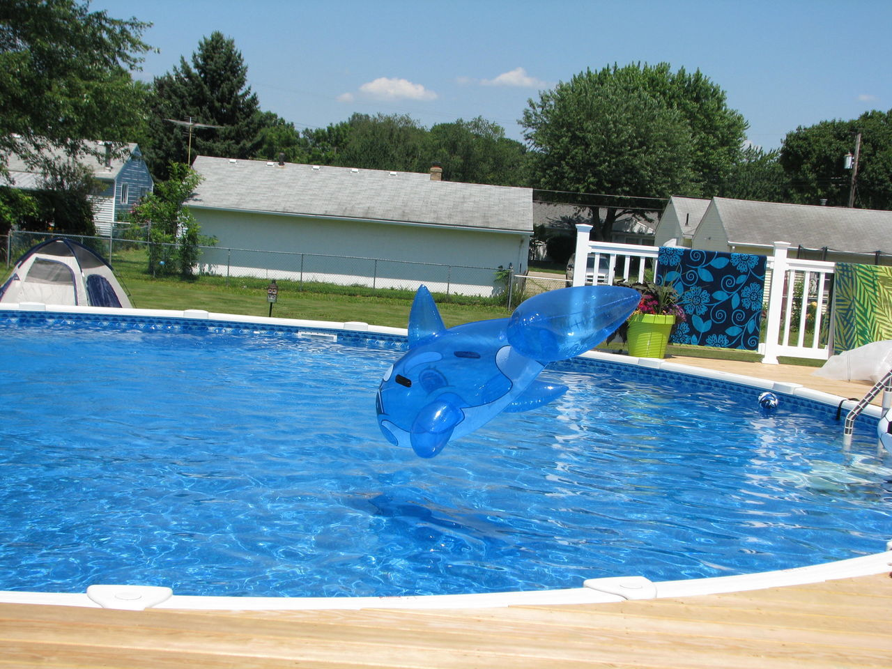 swimming pool, water, blue, tree, day, outdoors, jumping, no people, sunlight, swimming, sky, architecture, nature, water slide