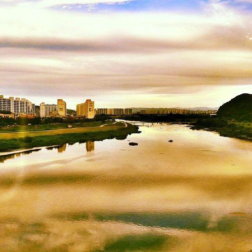 안심습지 의  아침  대구 Ansim_wetland Morning Daegu instagram_ios