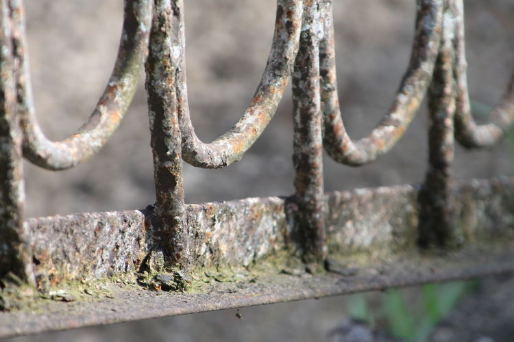 Close-up of rusty metallic fence