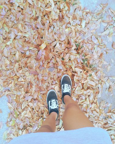 Walk away from trouble if you can Leaves Leaves Photography Shoestory EyeEmNewHere Low Section Standing Men Human Leg Canvas Shoe Shoe High Angle View Footwear Fall