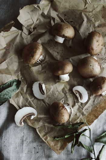 Dark Earth Earthy Food And Drink Green Mushrooms Plant Rustic Chef Clean Close-up Day Food Food And Drink Fresh Freshness Garden Healthy Eating High Angle View Indoors  Leaf Mushroom No People Organic Preparation