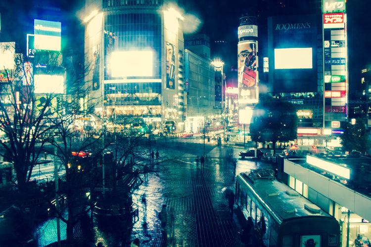Japan Night Shibuyacrossing Shibuya