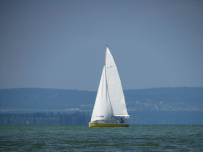 Beauty In Nature Blue Clear Sky Day Horizon Over Water Nature Nautical Vessel No People Outdoors Sailboat Sailing Scenics Sea Sky Tranquility Water Waterfront