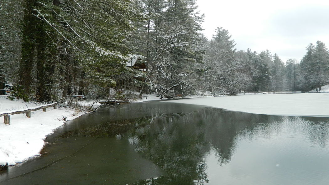 Frozen lake mirror Beauty In Nature Cold Temperature Day Forest Frozen Lake Growth Lake Landscape Mirror Nature No People Non-urban Scene Outdoors Scenics Sky Snow Tranquil Scene Tranquility Tree Water Winter
