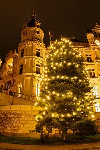 Night Christmas Christmas Tree Christmas Decoration Illuminated Christmas Lights Holiday - Event Architecture No People Celebration Schwerin Castle Schwerin Mecklenburg-Vorpommern Mecklenburg- Vorpommern Walking Around