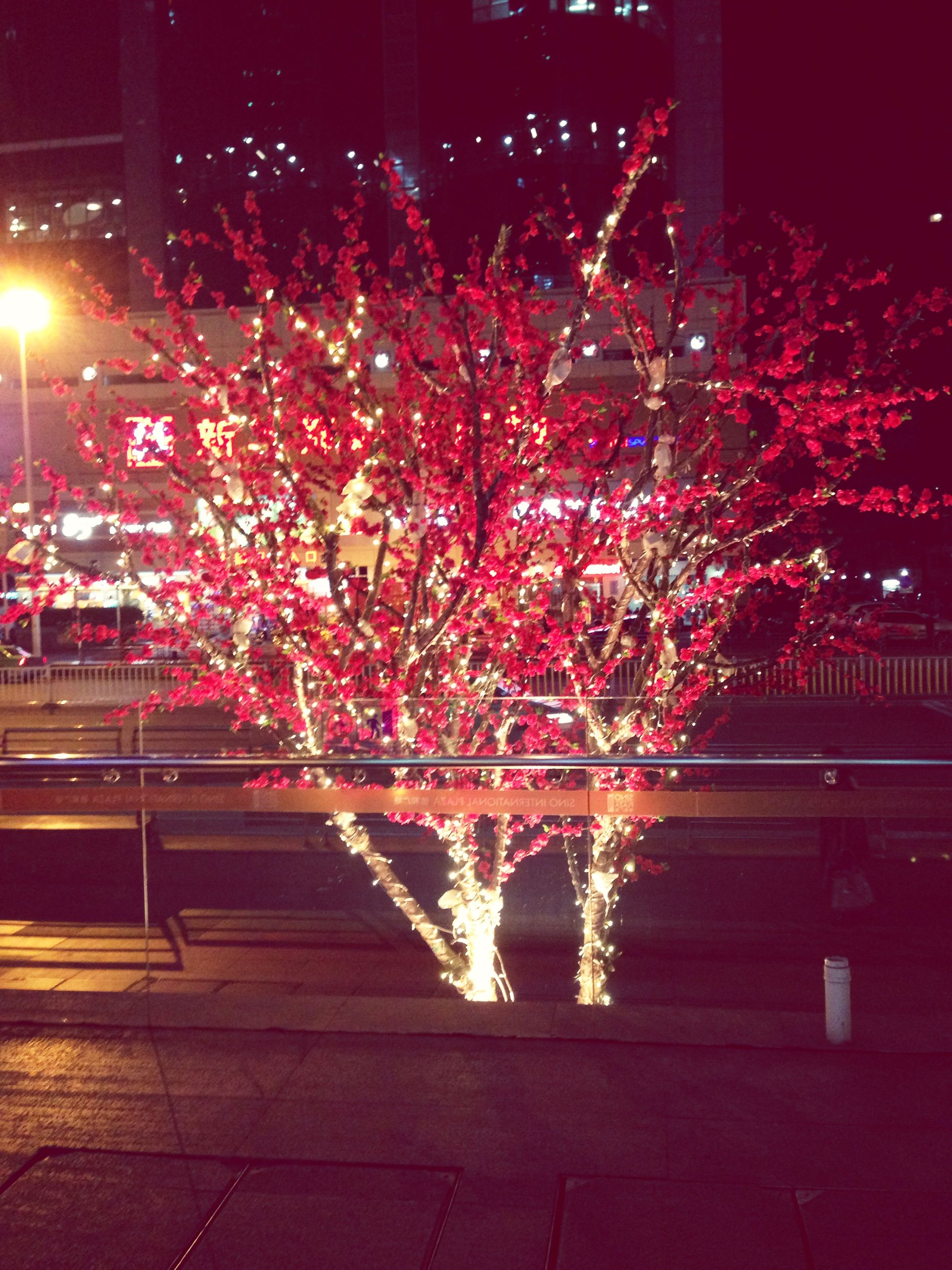 night, illuminated, building exterior, built structure, architecture, lighting equipment, city, street light, railing, tree, street, motion, outdoors, sidewalk, light - natural phenomenon, no people, city life, red, decoration, glowing